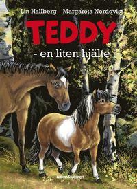 bokomslag Teddy : en liten hjälte