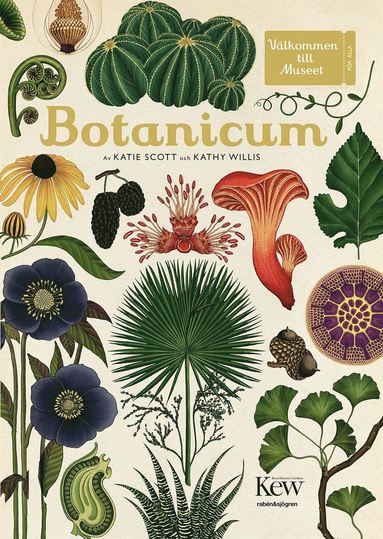 bokomslag Botanicum