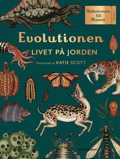bokomslag Evolutionen : livet på jorden