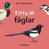 bokomslag Titta 10 fåglar