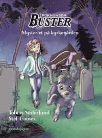 bokomslag Mysteriet på kyrkogården