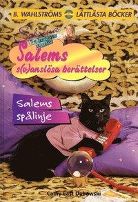 bokomslag Salems spålinje