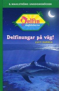 bokomslag Delfinungar på väg!