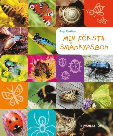 bokomslag Min första småkrypsbok