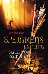 bokomslag Slaget om Skandia