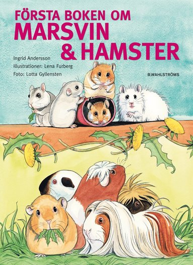 bokomslag Första boken om marsvin & hamster