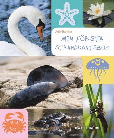 bokomslag Min första strandkantsbok