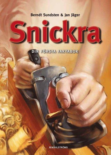 bokomslag Snickra : din första faktabok