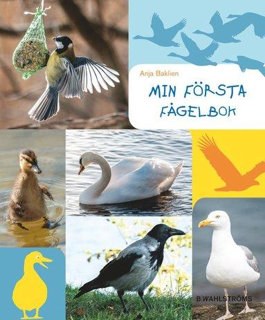 bokomslag Min första fågelbok