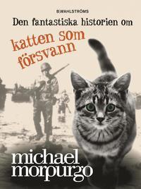 bokomslag Den fantastiska historien om katten som försvann