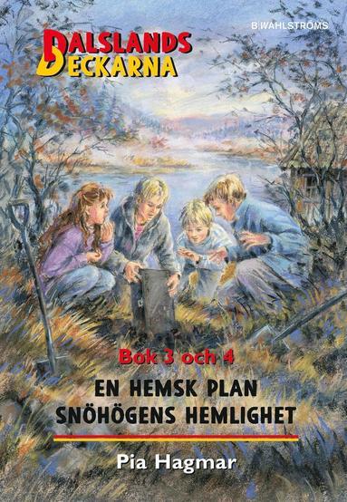 bokomslag En hemsk plan / Snöhögens hemlighet