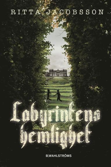 bokomslag Labyrintens hemlighet