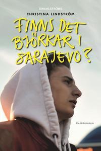 bokomslag Finns det björkar i Sarajevo?