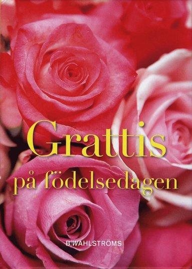 bokomslag Grattis på födelsedagen