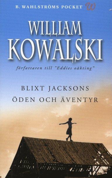 bokomslag Blixt Jacksons öden och äventyr
