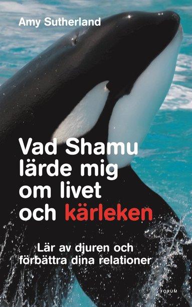 bokomslag Vad Shamu lärde mig om livet och kärleken : lär av djuren och förbättra dina relationer