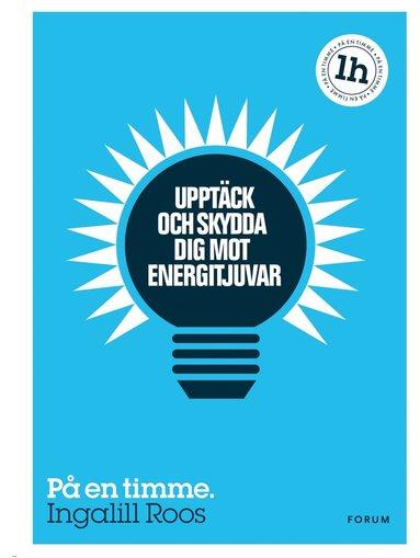 bokomslag Upptäck och skydda dig mot energitjuvar : på en timme