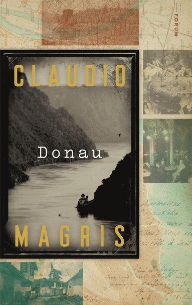 bokomslag Donau