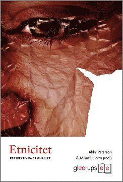 bokomslag Etnicitet : Perspektiv på samhället