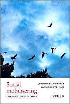 bokomslag Social mobilisering