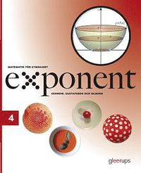 bokomslag Exponent 4