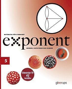 bokomslag Exponent 5