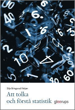 bokomslag Att tolka och förstå statistik