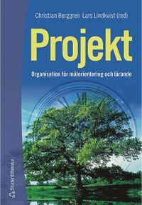 bokomslag Projekt - Organisation för målorientering och lärande