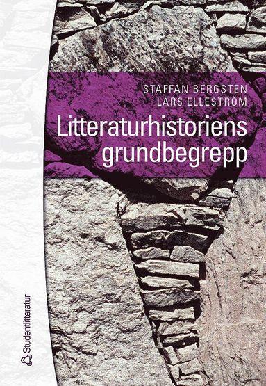 bokomslag Litteraturhistoriens grundbegrepp