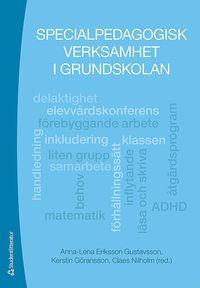 bokomslag Specialpedagogisk verksamhet i grundskolan