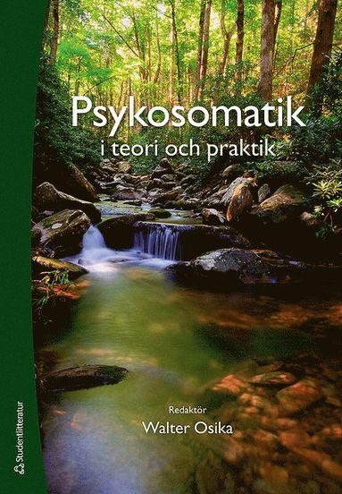 bokomslag Psykosomatik i teori och praktik