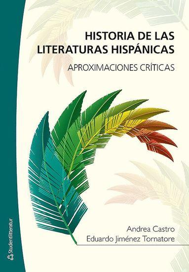 bokomslag Historia de las literaturas hispánicas : aproximaciones críticas