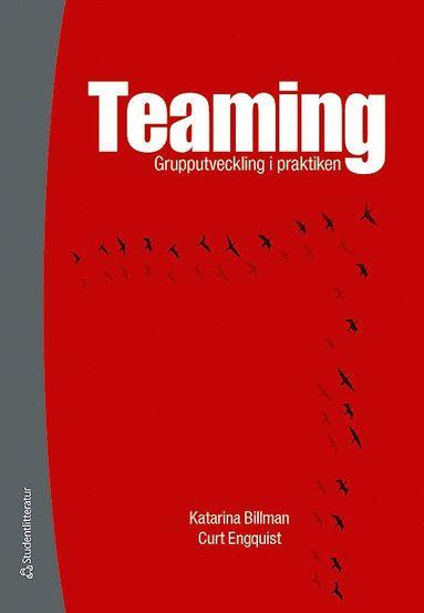 bokomslag Teaming : grupputveckling i praktiken