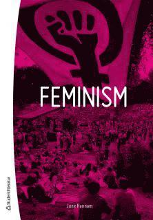 bokomslag Feminism
