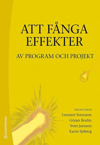 bokomslag Att fånga effekter : av program och projekt