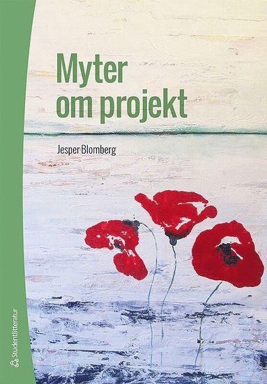 bokomslag Myter om projekt