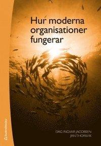 bokomslag Hur moderna organisationer fungerar