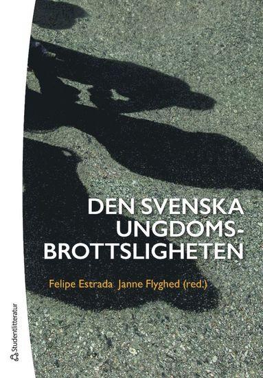 bokomslag Den svenska ungdomsbrottsligheten