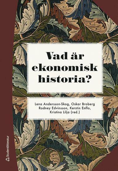 bokomslag Vad är ekonomisk historia?