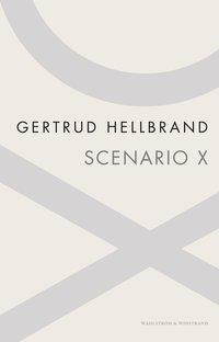 bokomslag Scenario X