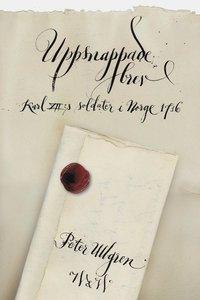 bokomslag Uppsnappade brev : Karl XII:s soldater i Norge 1716