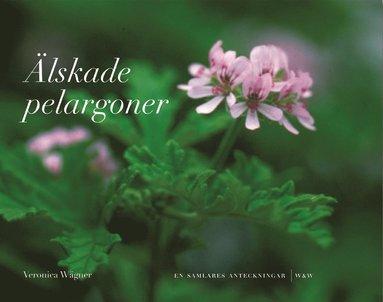 bokomslag Älskade pelargoner - En samlares anteckningar
