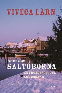 bokomslag Böckerna om Saltöborna - En fröjdefull jul & Sol och vår