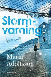 bokomslag Stormvarning