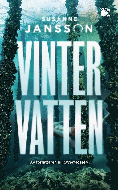 bokomslag Vintervatten