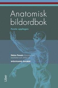 bokomslag Anatomisk bildordbok