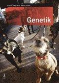bokomslag Genetik