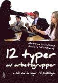 bokomslag 12 typer av arbetsgrupper : och vad de säger till psykologen