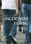 bokomslag Ungdomar i gäng : social- och straffrättsliga reaktioner