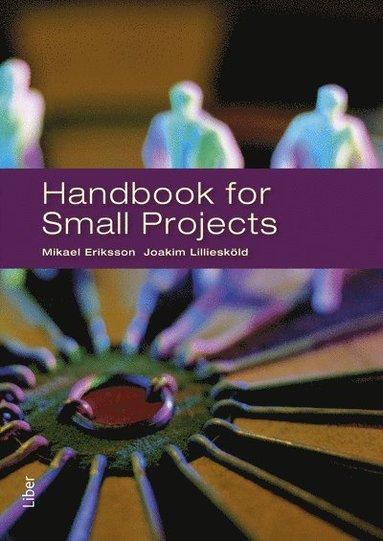 bokomslag Handbook for small projects